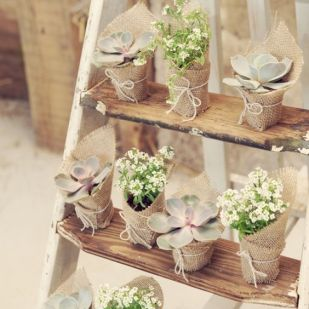 Wedding trends 12 id es pour vos cadeaux d invit s for Acheter plantes en ligne