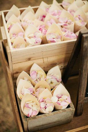 lancer pétales de roses (4)